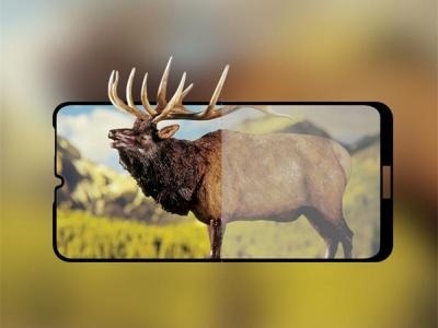 Стъклен протектор 5D Full Glue за Huawei Y6 2019 / Y6 Pro 2019, Черен