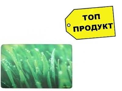 ПОДЛОЖКА ЗА МИШКА ACME PLASTIC  WITH SPONGE BASE,GRASS